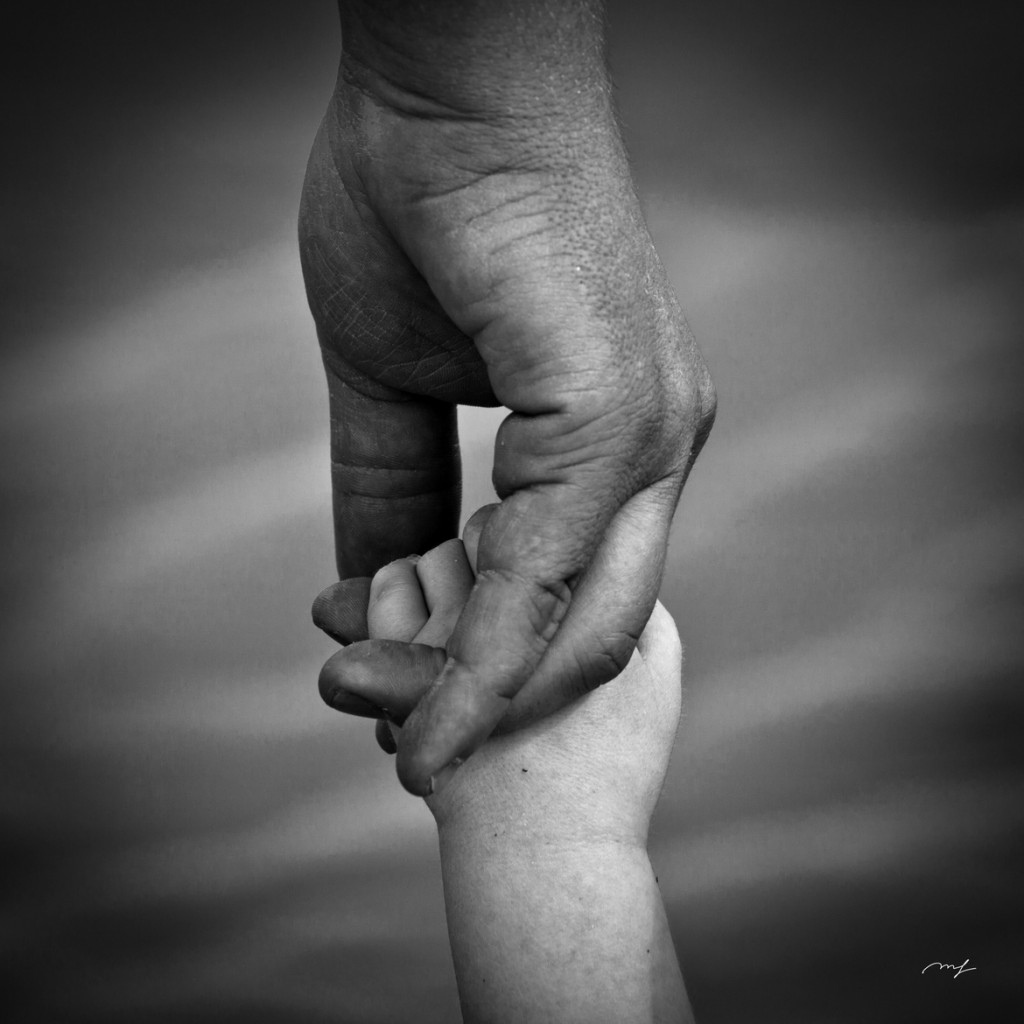 Father Love: The Father's Love…